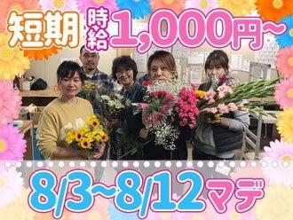 短期 アルバイト 札幌