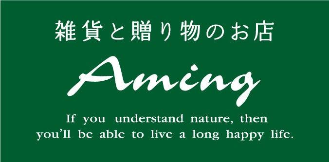 アミング前橋店・高崎飯塚店