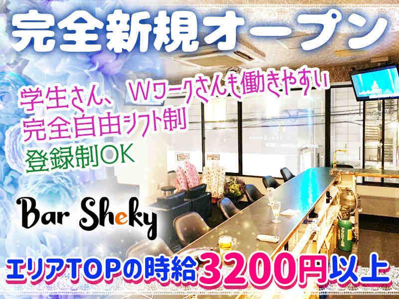 足立区新田求人情報   Girl's Bar Sheky(シェーキー)